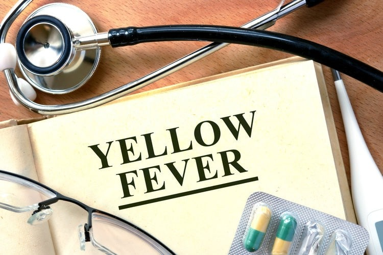 Some countries might require you to show a Yellow Fever Vaccine Certificate.
